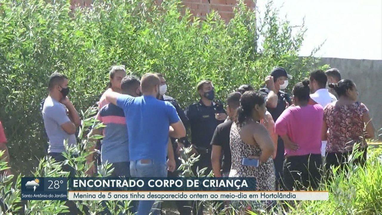 Padrasto confessa que matou enteada de 5 anos em Hortolândia, diz Polícia