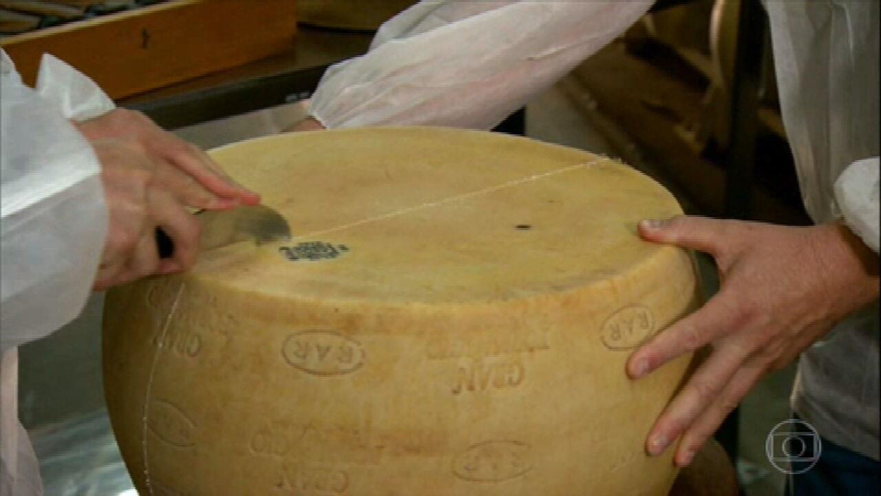 Saiba como é produzido o famoso queijo grana padano em uma fazenda pioneira do Rio Grande do Sul