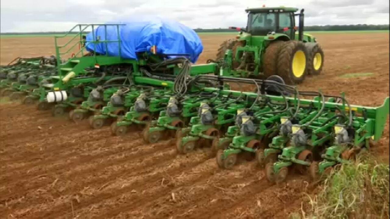 Plantio do milho atrasa em Mato Grosso