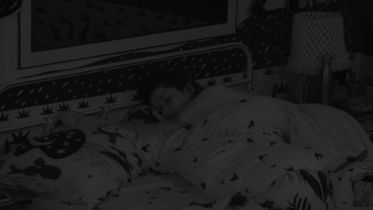 Brothers dormem após madrugada de Festa Organnact no BBB21